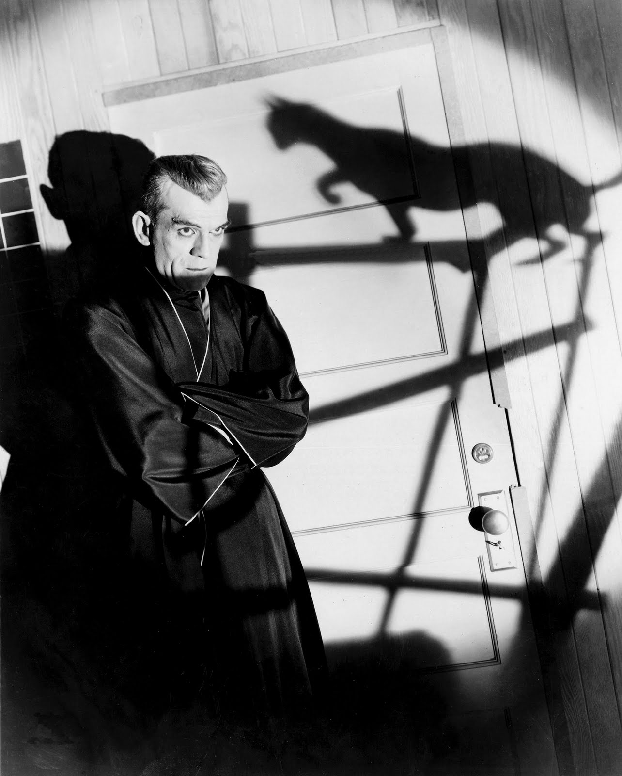 BlackCat Poelzig cat Shadow