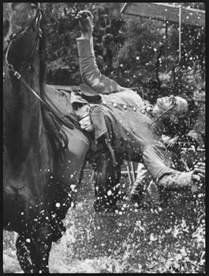 Leroy Johnson stuntman
