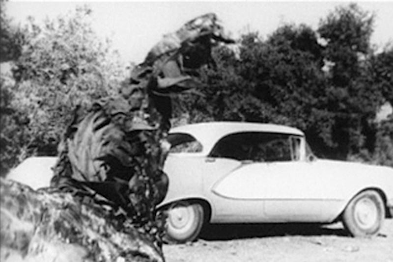 creeping & car