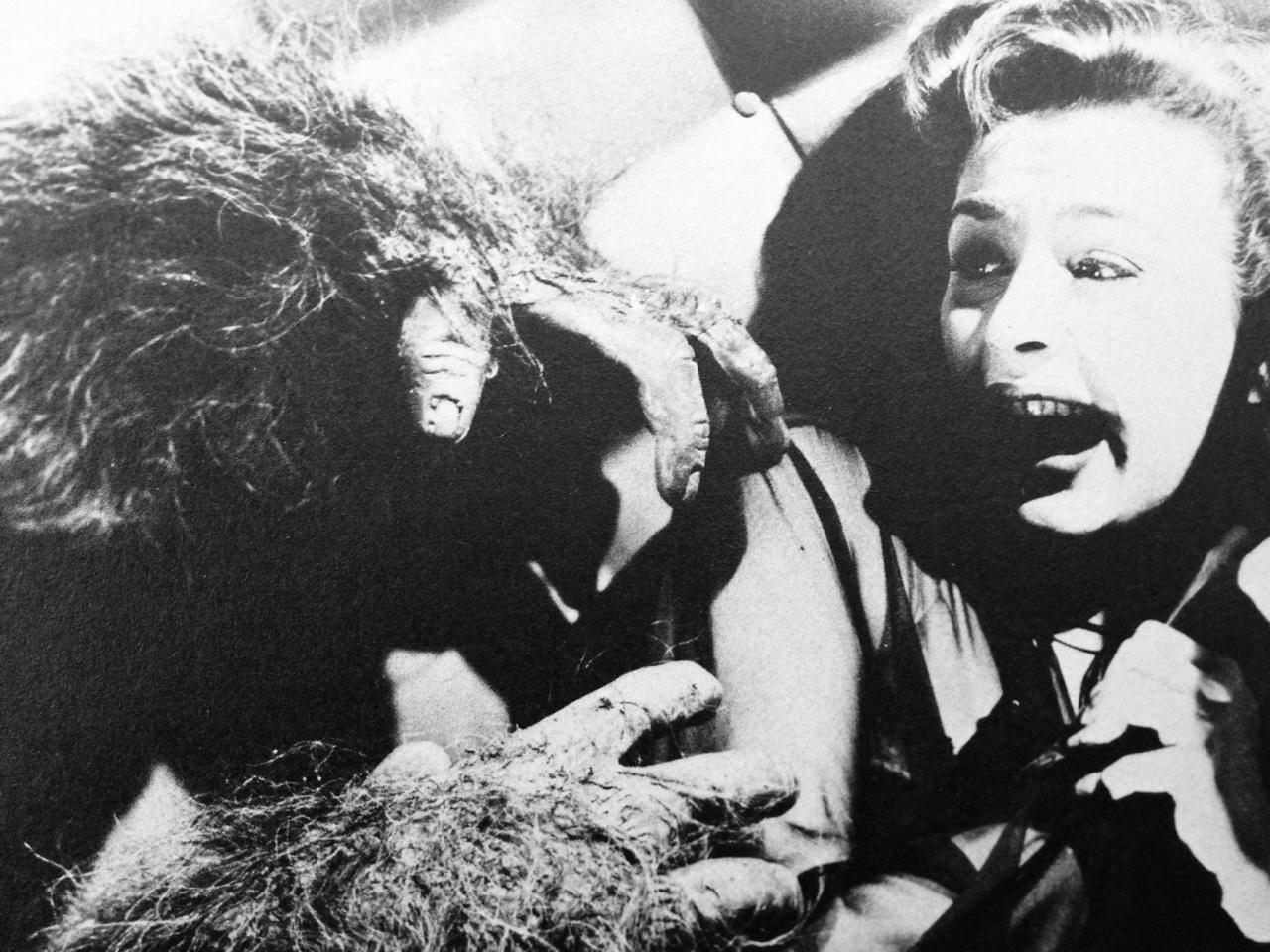 phantom in the rue morgue 1954