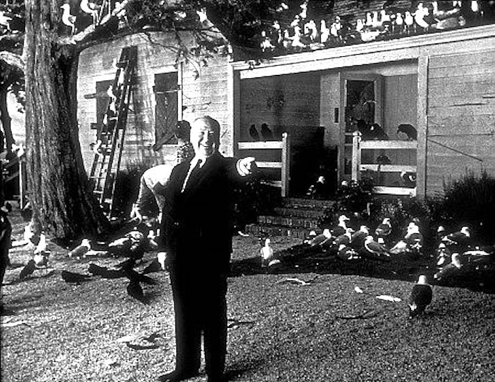 Hitch on the set