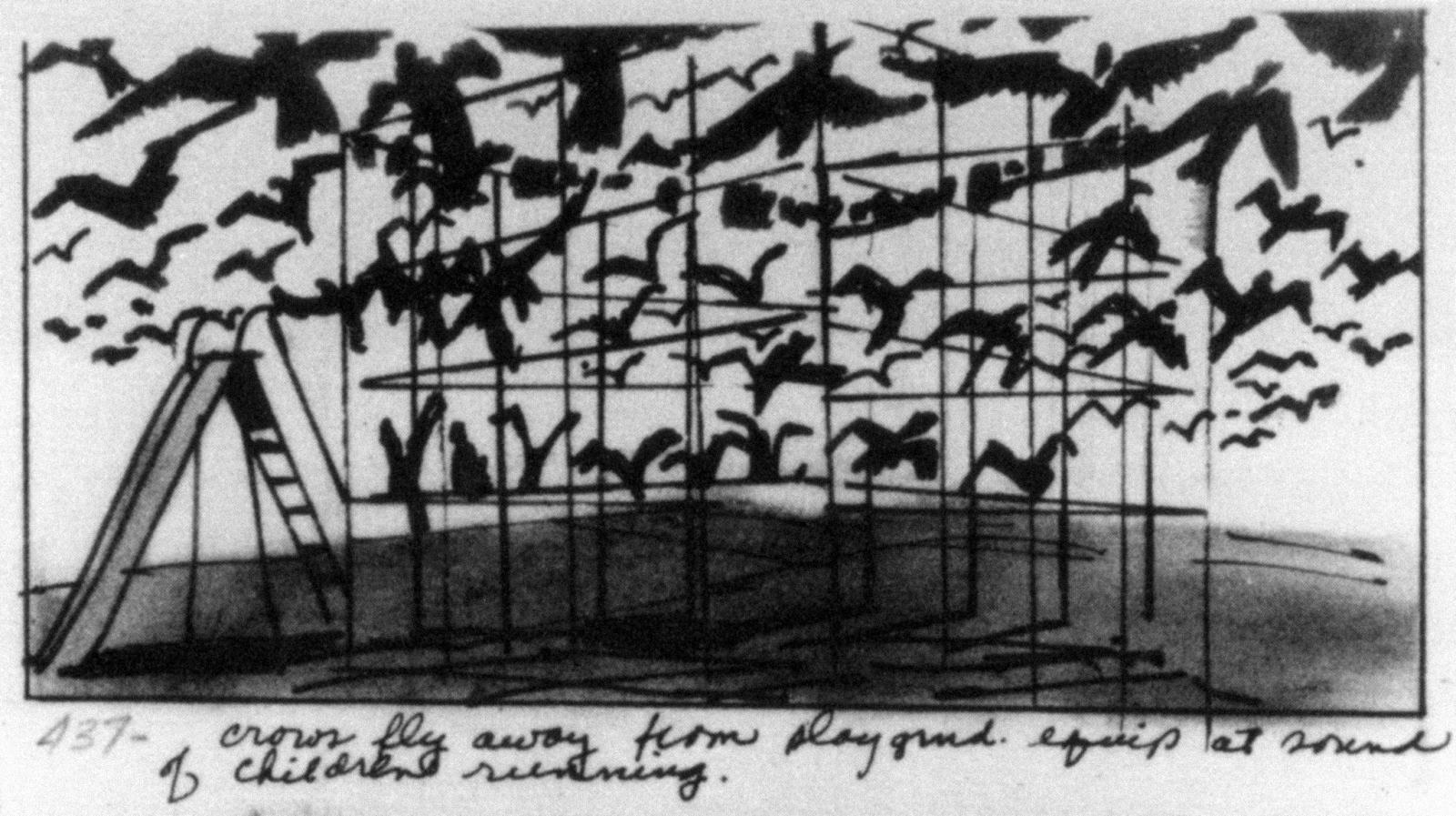 story boards The-Birds-1963