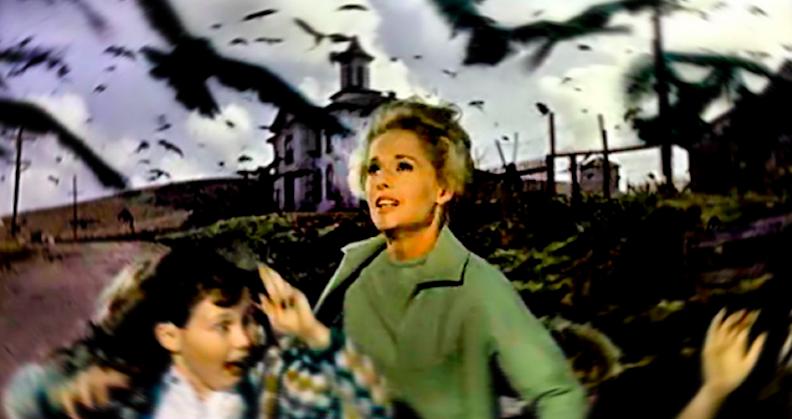 the-birds-1963